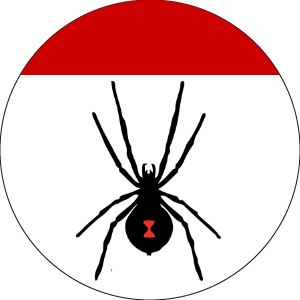 Blazon: Argent, a spider tergiant Sable a chief Gules